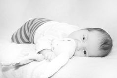 Small baby black and white photo Royalty Free Stock Photo