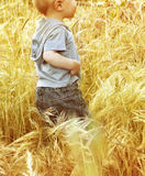 Small baby boy Stock Image