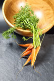 Small baby carrot with green leafs Stock Image