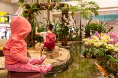 A small baby child in living coral hoodie is sitting at the airport. Girl Infant thoughtfully watching the fish in the aquarium. Fountain stock images