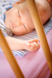 Small baby in a cradle Stock Images