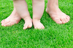 Small baby feet  Learn to walk. Small baby feet on green grass Learn to walk Royalty Free Stock Photography