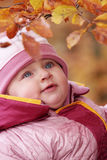 Small baby in forest Stock Image