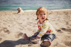 Small baby, little girl in blue jeans, pink shoes and colourful pullover sitting and playing in sand at the beach with big dog beh Royalty Free Stock Photos