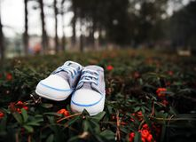 Small Baby Shoes. royalty free stock image