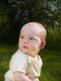 Small baby at summer lawn royalty free stock photos