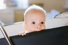 Small baby teeth chewing your favorite stroller Royalty Free Stock Photography