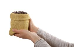 Small bag of coffee beans in female hands Stock Image