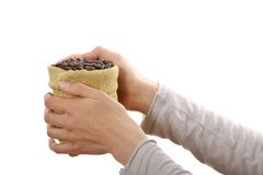 Small bag of coffee beans in female hands Stock Photography