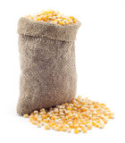 Small bag of corn Stock Photography