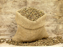 Small bag with hemp seeds Stock Images