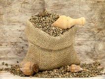 Small bag with hemp seeds Stock Image