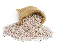 Small bag of rice Stock Image
