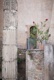 A small balcony. With flowers in pots in a medieval building. Rome, Italy Royalty Free Stock Images