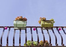 Small balcony and pots with succulent flowers royalty free stock images