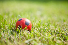 Small ball on grass background Stock Photography