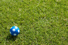 Small Ball On Green Soccer Field Stock Images