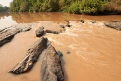Small bamboo bridge Royalty Free Stock Photography