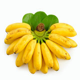 Small bananas isolated on white. Branch of small bananas isolated on white Stock Image