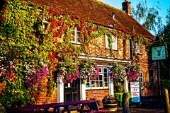 Small bar in the town of Poole, Wales, UK. Small bar/pub serving local food and beer, covered in vegetation, in the town of Poole, Wales, UK Stock Images