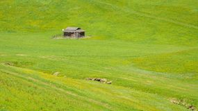 Small barn in the green meadow of the mountains of Trentino Alto Adige, South Tyrol, northern Italy.  stock images