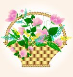 Small basket with flowers Royalty Free Stock Images