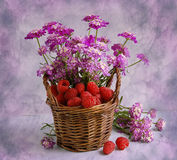 Small basket with a raspberry and colors Stock Photography