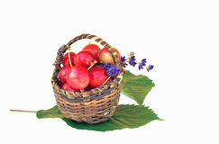 Small basket with red cherries Royalty Free Stock Photo