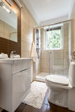 Small bathroom interior with glazed shower Stock Image