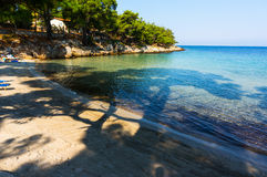 Small beach shaded by trees Royalty Free Stock Photo