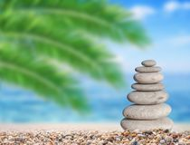 Small beach stone on beach like symbol of balance with green palm. Leaf background Stock Photos