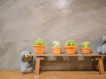 Small bear statue and Small cactus on the wood Table with Stone background.  stock image