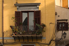 Small beautiful balcony with a large number of different cactuses in pots. Palermo. Sicily. Royalty Free Stock Photo