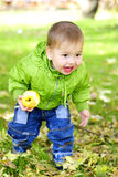 The small beautiful boy walks. On a green glade with an apple Stock Images