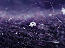 Small beautiful carved cold iridescent snowflake lies on a warm royalty free stock image
