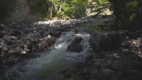 Small beautiful river flows between rocks and trees. stock video
