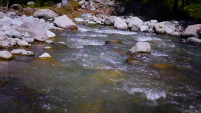 Small beautiful river flows between rocks and trees. stock footage