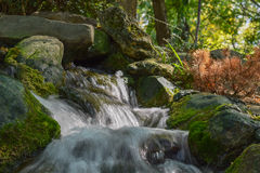 Small beautiful stream with waterfall in park Stock Image
