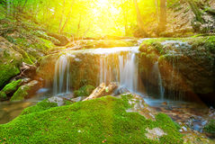 Small beautiful waterfall Stock Photos