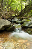 Small beautiful waterfall in a forest Royalty Free Stock Images