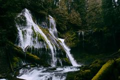 A small beautiful waterfall in a forest forming a river. A small beautiful waterfall in the wilderness surrounded by greenery royalty free stock photo