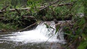Small beautiful waterfall in the Sayan Mountains. Stock Photo