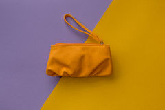 Small beauty bag on colorful background Stock Images