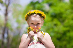Small beauty with dandelions Stock Photos