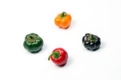 Small bell pepper chili capsicum paprika Royalty Free Stock Images