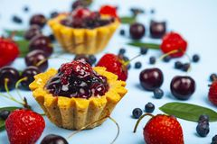 Small berry cake and ripe berries stock photos