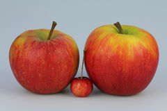 Small and big apples Stock Image