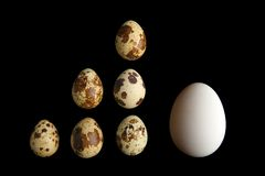 Small and big eggs royalty free stock photos