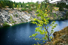 Small birch on foreground in marble quarry Stock Image