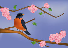 Small bird on a blossoming tree Royalty Free Stock Photo